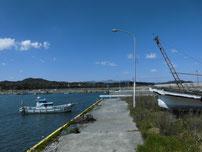 稲童漁港 港内の写真