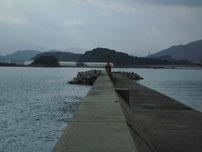柄杓田漁港 左側の波止の写真