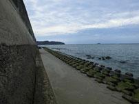 佐波川河口 左岸 先端付近 の写真