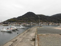 問屋口海岸 漁港の写真