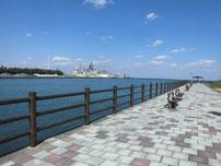 苅田緑地公園周辺 公園内の写真