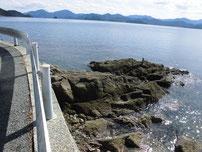 青海島 道路沿いの写真1