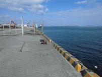 白島行フェリー乗り場周辺 の写真