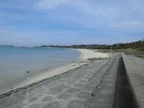 土井ヶ浜 駐車場前付近砂浜の写真