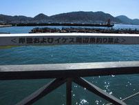 カモンワーフ・いけす周辺釣り禁止の写真