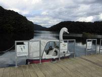 豊田湖 ペダルボートの写真