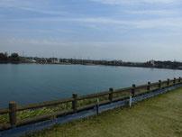 能徳工業団地 公園横 の写真
