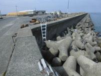 宇島港 テトラポット 脚立の写真