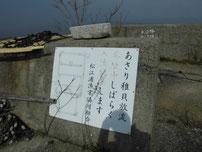 松江漁港 潮干狩り の写真