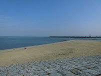 浜の宮海岸 右側 の写真