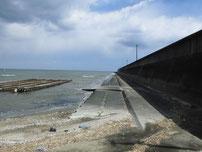 椎田漁港 干拓地護岸 の写真