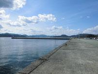 通漁港 波止内側の写真