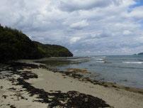 只の浜海岸 ドライブイン側岩場の写真