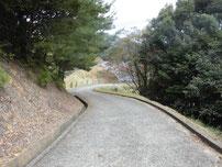 豊田湖 桟橋 道順の写真3