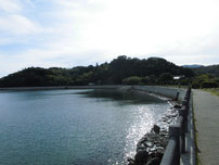 いがみ海浜公園 遊歩道の写真