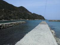 飯井港 河川の波止の写真