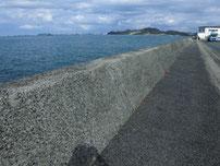 高浜港 道路沿の護岸 の写真