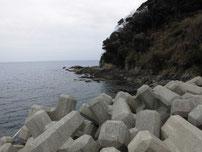 防府マリーナ 波止 右側の地磯 の写真