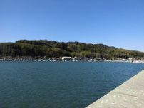 厚狭港 の写真