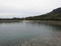 向島運動公園 駐車場とテニスコートの間の海岸 の写真