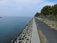 豊前発電所周辺 護岸の写真