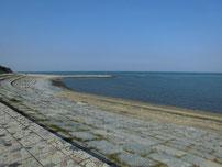 浜の宮海岸 の写真