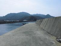 三見漁港 内側の写真
