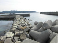 和久漁港 右側の波止 の写真