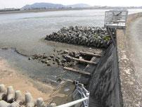 今川河口 河口域の写真