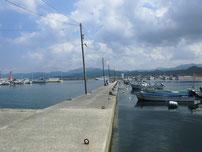 川棚漁港 内波止の写真2