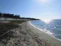 津布田海岸 の写真