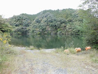 豊田湖 山本ボート店跡の写真