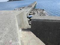 苅田赤灯台 分岐箇所 階段の写真