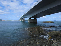 垢田 地磯 橋げたの下の写真