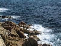 犬鳴岬 写真2