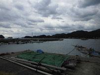 野波瀬漁港 の写真
