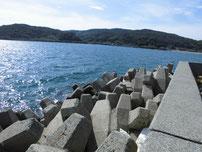 大浦漁港 右側の護岸の写真