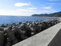 宇賀本郷テトラポット4 の写真