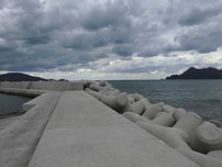 湊漁港 外波止 テトラポットの写真