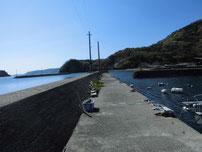 奈古漁港 内波止の写真