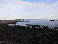 本山岬 岩場横の護岸 の写真