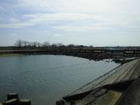 今川河口 堰の写真