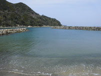 飯井港 港内の写真