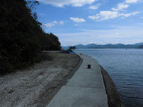 大日比漁港 小波止の奥側の写真