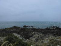 蓑島海水浴場 岩場の写真
