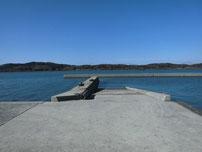 高泊漁港 の写真