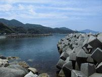 宇田港 右側の波止 の写真