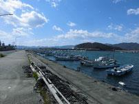 蓑島漁港 港内の写真