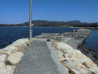 大井浦漁港 左側の波止付け根付近の写真
