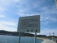 大浦漁港 港内中央の波止の写真